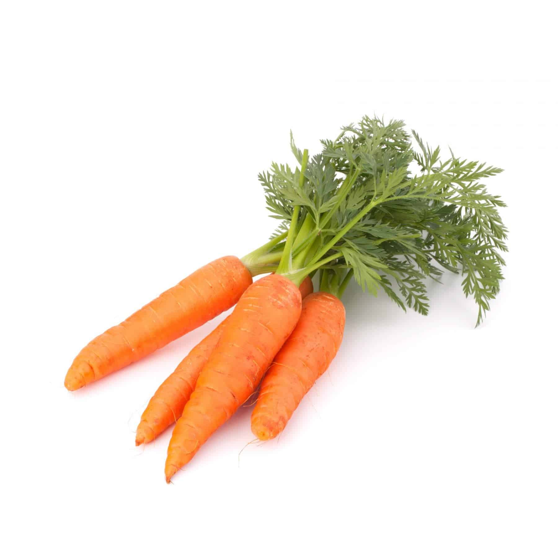 Carrots M Hughes And Sons Llandudno